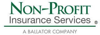 Non Profit Insurance Services