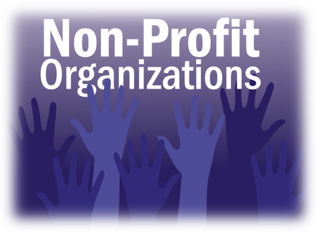 The Nonprofit Sector in Florida